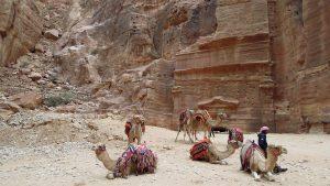 Outer Siq, Petra