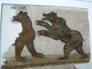 Roman mosaic of bear Bardo Museum Tunis Tunisia
