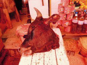 Ox's head on local market, Tunis, Tunisia